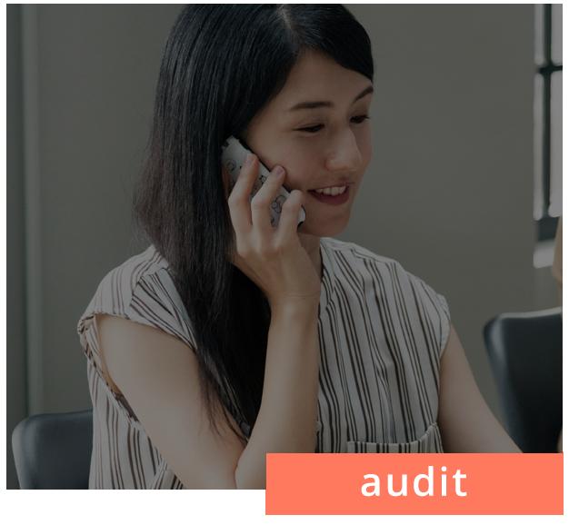 audit sales