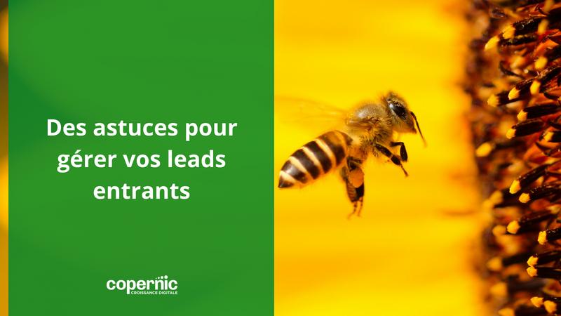 Lead management : Savez-vous comment gérer vos leads entrants ?